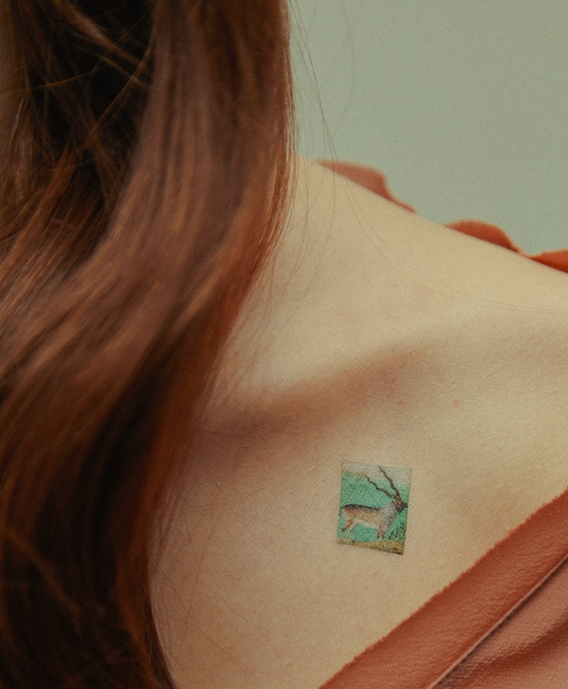 Переводные Татуировки Miniatures 06