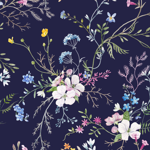 Delicate flowers (dark background)