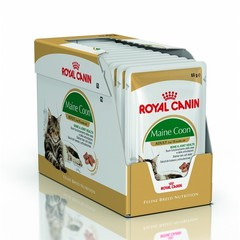 Royal Canin Mini Maine Conn