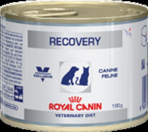 Royal Canin RECOVERY для собак и кошек в период выздоровления