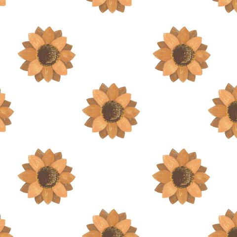 цветы имбирные