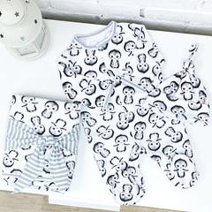 СуперМамкет. Комплект для выписки с комбинезоном, шапочкой и пледом Пингвины серый вид 1