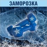 Заморозка клубной карты на 5 дней в CityFitness Добрынинская (frz5 msu)
