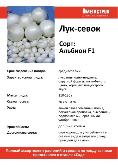 Лук-севок Альбион F1(белый) 0,5кг
