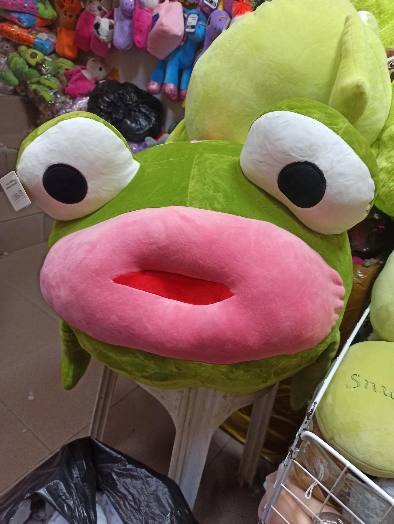 лягушка с большими губами