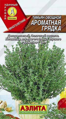 Тимьян овощной Ароматная грядка