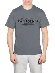 461493-15 футболка мужская, серая