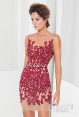 Terani Couture C3701