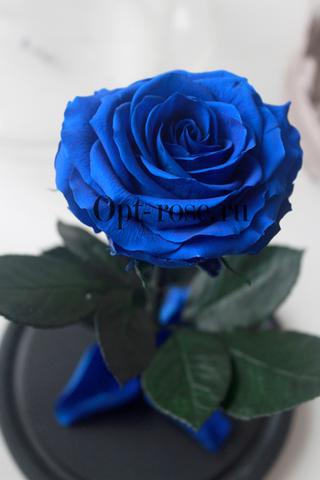 Роза в колбе Premium Оптом(Выс*Диам*Бутон 27*15*7-8см)Цвет синяя