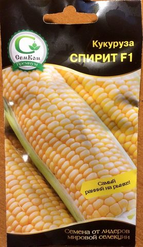 Семена Кукуруза Спирит F1 (Syngenta) 10 шт