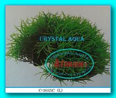Растение Атман C-3035CL