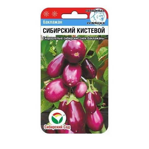 Сибирский кистевой 20шт баклажан (Сиб Сад)