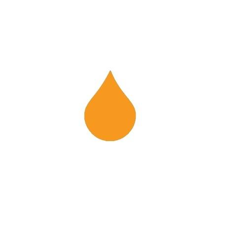 Пигментные чернила STS для Epson Orange 250 мл