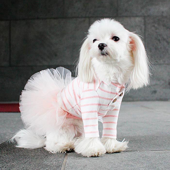 платье для собаки с пышной юбкой купить в москве