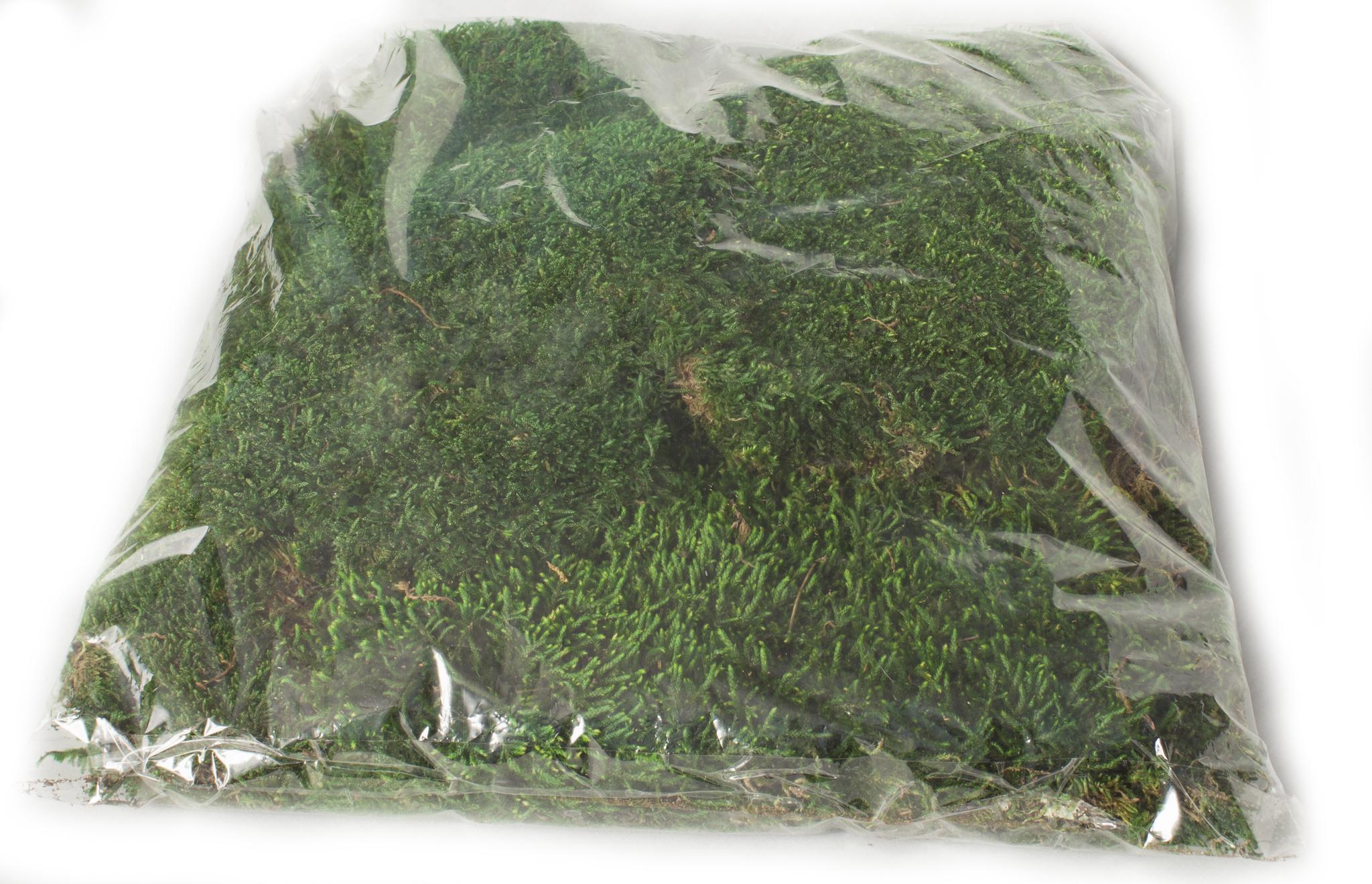 Стабилизированный мох пластами в пакетах