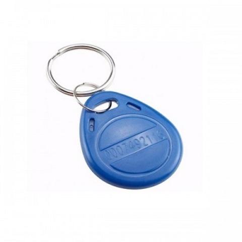 EM4100 ABS Ключ с кодом неперезаписываемый