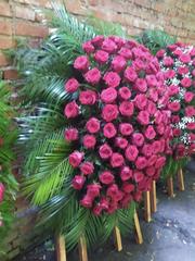 Венок из живых цветов элит ВЖ-28