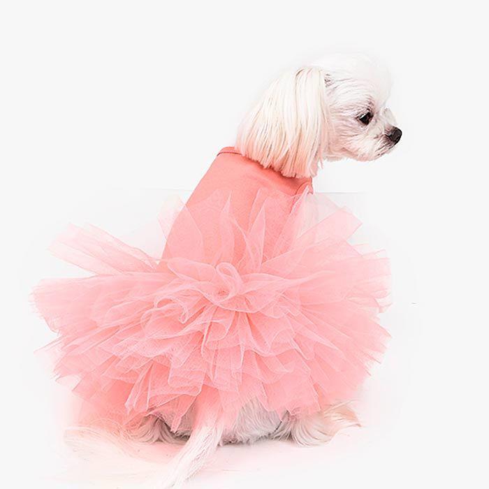 платье для собаки с пышной юбкой