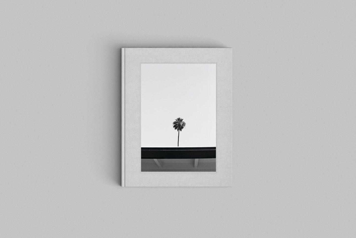 Cereal – Palm Книга