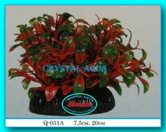 Растение Атман Q-131A, 20см