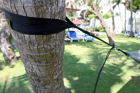Стрэпы на дереве.