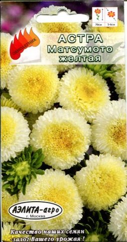 Семена Астра Матсумото желтая, Одн
