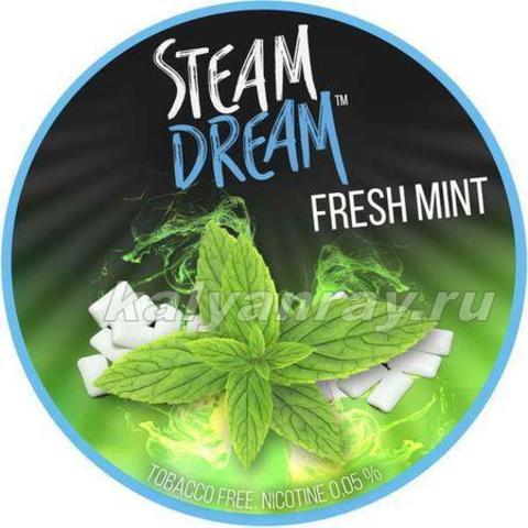 Steam Dream - Жвачка с мятой