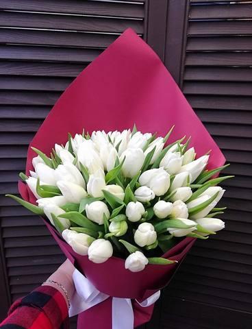 59 тюльпанов в оформлении #17267