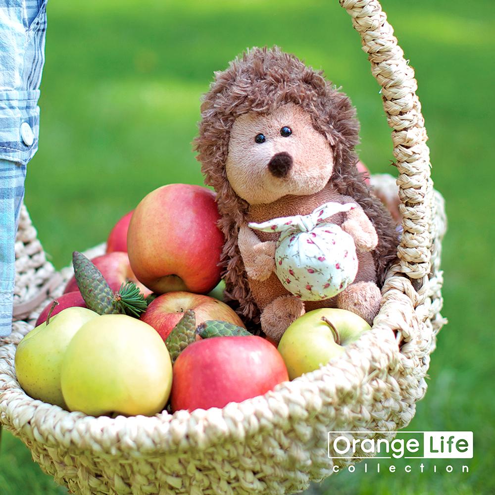 Ёжик Колюнчик с узелочком (Orange Toys)