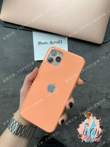 Чехол iPhone 11 Pro Glass Pastel color Logo /peach/