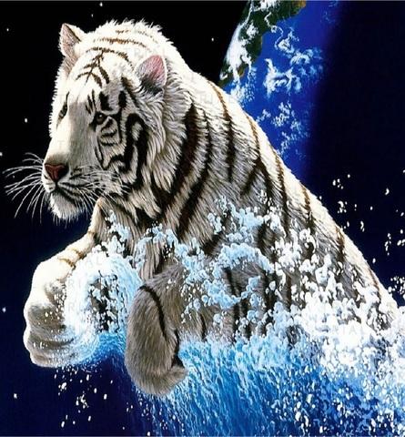 Алмазная Мозаика 30x40 Черно-белый тигр