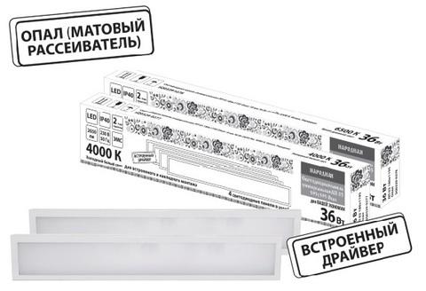 Светодиодная панель универсальная ЛП 03 180х1195 Опал 19 мм 36 Вт 2650 Лм, 6500 К, белая, Народная