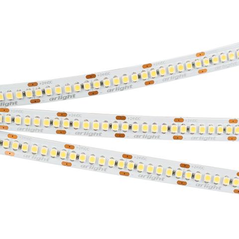 Светодиодная лента RT6-3528-240 24V Cool 8K 4x (1200 LED) (ARL, 19.2 Вт/м, IP20)