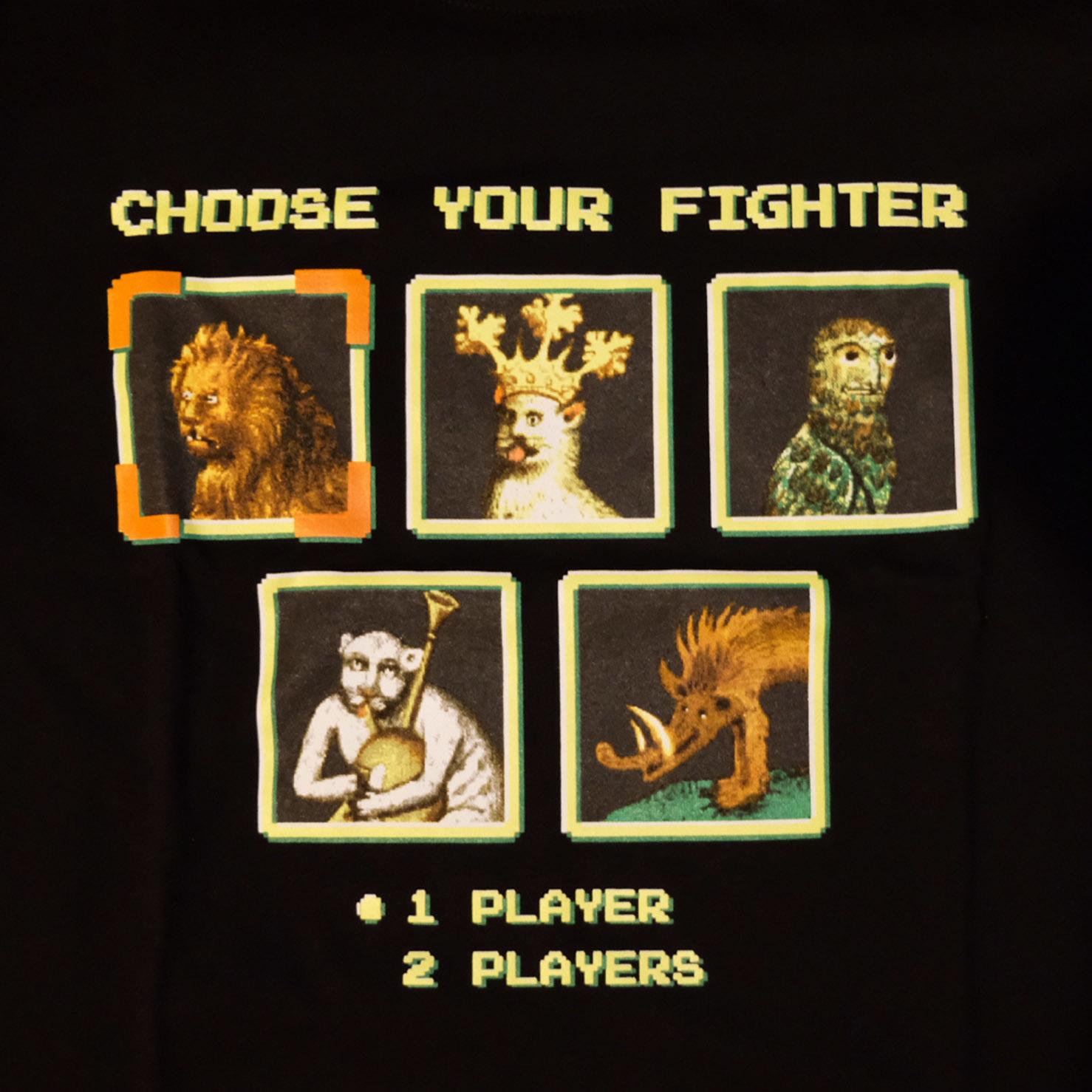 Choose your fighter / лонгслив