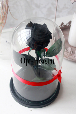 Роза в колбе Premium Оптом(Выс*Диам*Бутон 27*15*7-8см)Цвет черная