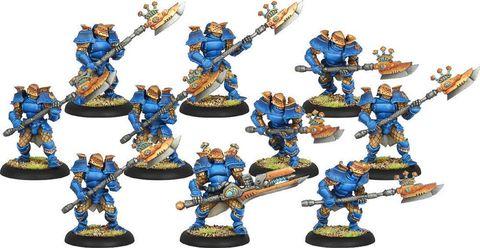 Cygnar Stormguard Knights PLASTIC BOX
