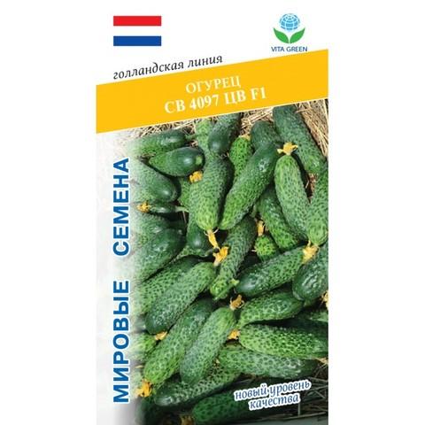 Семена Огурец СВ 4097 ЦВ F1 (Vita Green)