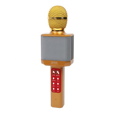 Беспроводной караоке-микрофон WSTER WS-1828, золотой