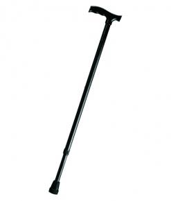 Трости Трость опорная телескопическая с пластиковой ручкой prod_1383390640.jpg