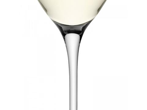 Набор из 4 бокалов для белого вина Wine 340 мл