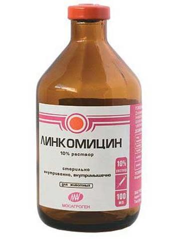 Линкомицин 100 мл