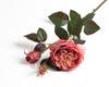 Пурпурная роза