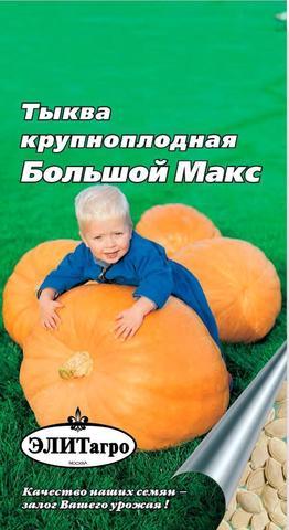 Семена Тыква крупноплодная Большой Макс