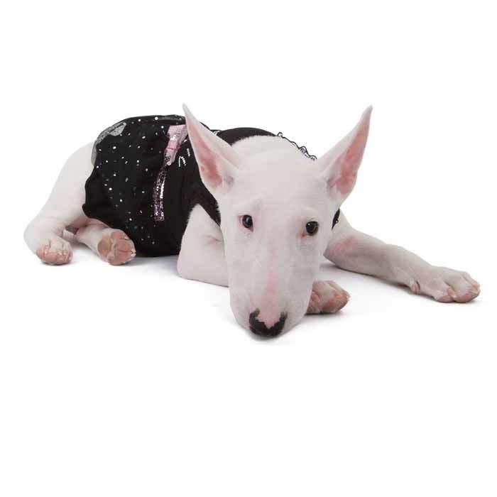 089 PA - Платье для собак