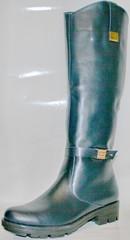 сапоги осенние женские кожаные