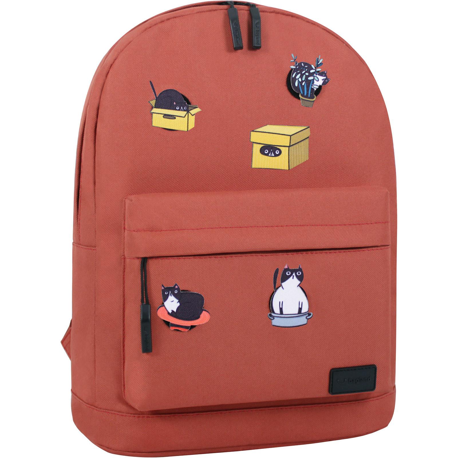 Молодежные рюкзаки Рюкзак Bagland Молодежный W/R 17 л. 286 кирпич (00533662 Ш) IMG_3117.JPG