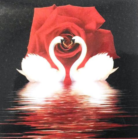 Алмазная Мозаика 40x50 Белые лебеди на фоне розы