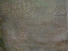 Искусственная кожа Scarlet (Скарлет) 3036