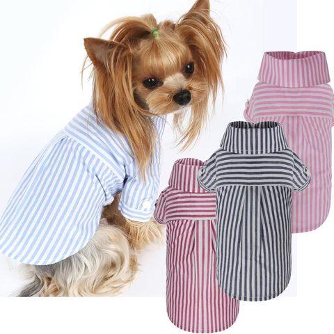 271 PA - Рубашки для собак
