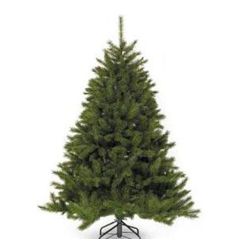 Елка Triumph Tree Лесная красавица 500 см